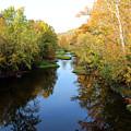Batavia, Ohio Creek - Other Side Vertical by Lorraine Baum