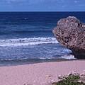 Bathsheba Beach Barbados by Arvin Miner