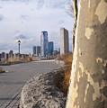 Battery Park by Henri Irizarri
