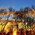 Battery Park Sunset by Randy Aveille