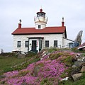 Battery Point Lighthouse by Adrienne Wilson