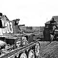 Battle Of Stalingrad Nazi Tanks by David Lee Guss