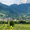 Bavarian Alps With Village And Flowers by Carol Groenen