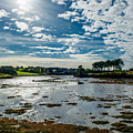 Bay At Low Tide In Clonakilty In Ireland by Andreas Berthold