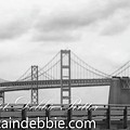 Bay Bridge 4 by Captain Debbie Ritter