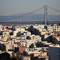 Bay Bridge With Houses And Hills by Carol Groenen