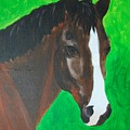 Bay Horse by Emily Page