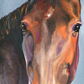 Thoroughbred Royalty by Susan A Becker