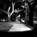 Bay Street Midnight Path by Robert M Seel