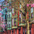 Bay Village Row Houses - Boston by Joann Vitali