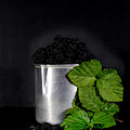 Blackberries by Edgar Laureano