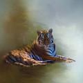 Be Calm In Your Heart - Tiger Art by Jordan Blackstone