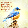 Be Faithful In Small Things by Tina LeCour