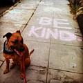Be Kind by Sasha Kay
