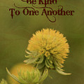 Be Kind To One Another by Trish Tritz