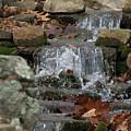 Be Water by Jonathan Ellis Keys