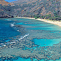 Beach And Haunama Bay, Oahu, Hawaii by Panoramic Images