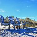 Beach Art - Waiting For Friends - Sharon Cummings by Sharon Cummings