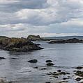 Beach At Ballintoy by Teresa Wilson