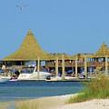 Beach Bar by Michelle Powell