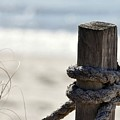 Beach Barrier by Al Powell Photography USA
