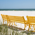 Beach Chairs By Darrell Hutto by J Darrell Hutto