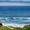Beach Cloud Streak by Joseph Hollingsworth