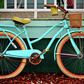 Beach Cruiser Bike by Cynthia Guinn