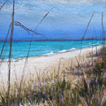 Beach Dreaming by Susan Jenkins