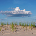 Beach Dune Clouds Jersey Shore by Terry DeLuco