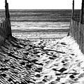 Beach Entry Black And White Long Beach Island by John Rizzuto