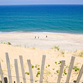 beach fence and ocean Cape Cod by Matt Suess
