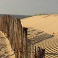 Beach Fence, Cape Cod by Nicole Freedman