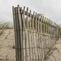 Beach Fence by Juli Scalzi