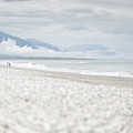 Beach For Two by Alex Conu