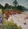 Beach by Fran Kelly