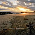 Beach Gold by Michael Scott