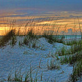 Beach Grass And Sand Dunes by HH Photography of Florida