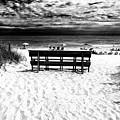 Beach Haven Beach Day At Long Beach Island by John Rizzuto
