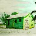 Beach House by Richard Nickson