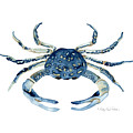 Beach House Sea Life Blue Crab by Audrey Jeanne Roberts
