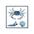 Beach House Sea Life Crab Turban Shell N Scallop by Audrey Jeanne Roberts
