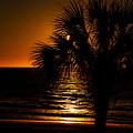 Beach House Sunset by Penny Lisowski