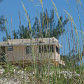 Beach House Through Sea Oats by Lisa Gabrius