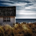 Beach Hut by Dawn Van Doorn