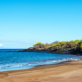 Beach In The Galapagos by Jess Kraft