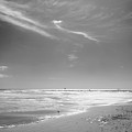 Beach by John Gusky