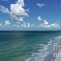 Beach Life by Patrick Donovan