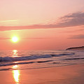 Beach Life by Victor K