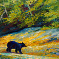 Beach Lunch - Black Bear by Marion Rose
